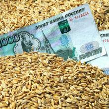 Работа торговым Агентом по продажам зерна пшеницы
