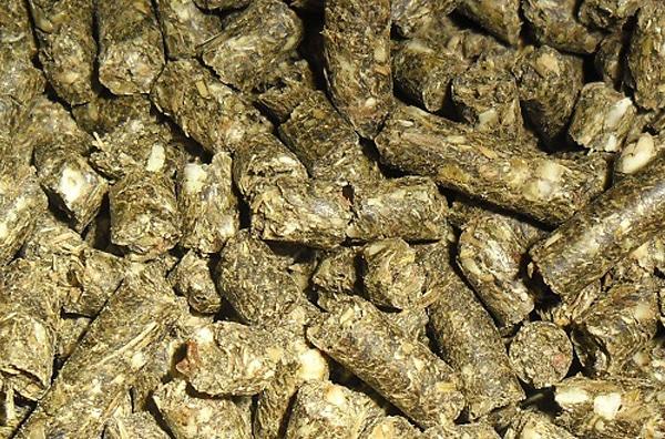 Шрот подсолнечный гранулированный цена